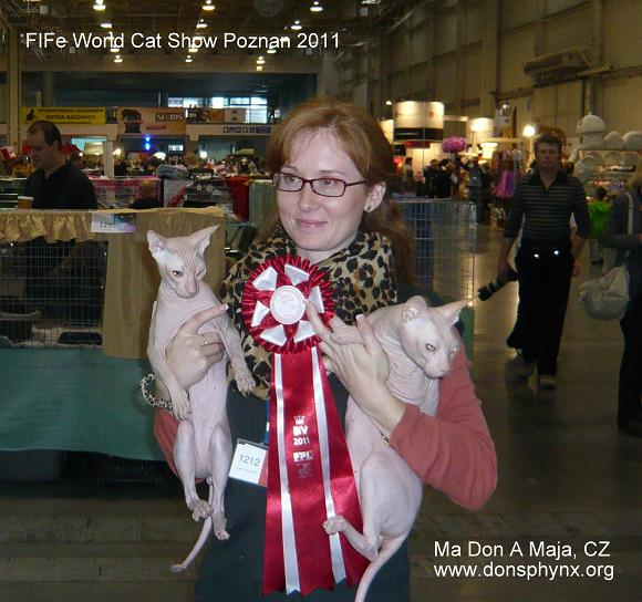 Peer Gynt Ma Don A Maja, CZ (on the left) and GIC Plombir Moy Champion (on the right) at FIFe WORLD CAT SHOW 2011 in Poznan, Poland